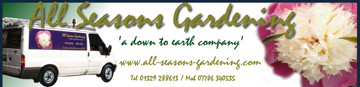 All Seasons Gardening